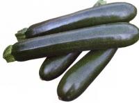 Zucchina Nera